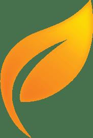 Agri International Home Logo